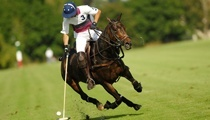 How to Play Polo